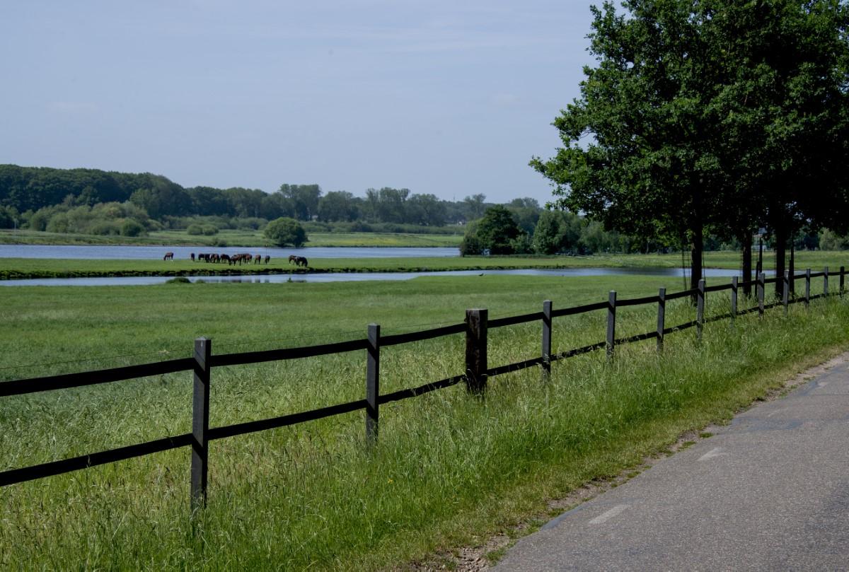 langs de Maas