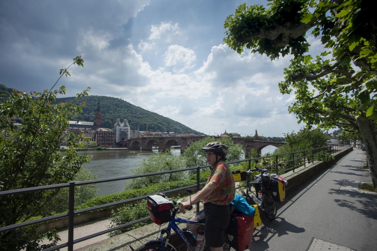 Burg over neckar bij Heidelberg