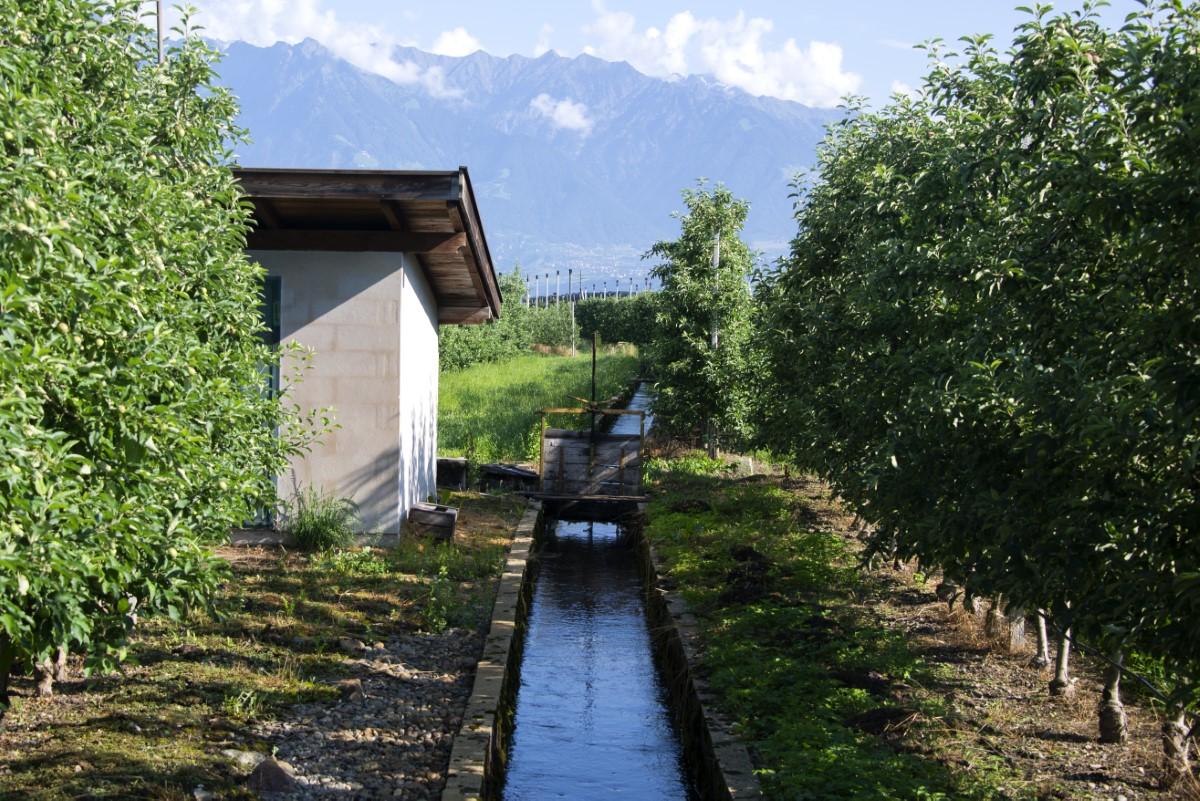 irrigatie kanaaltje Bij Bolzano