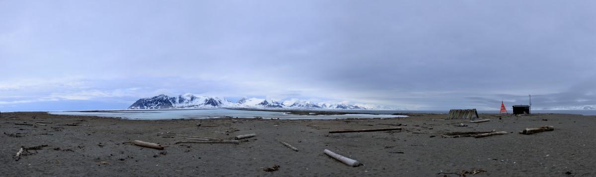 Panorama bij walrussen