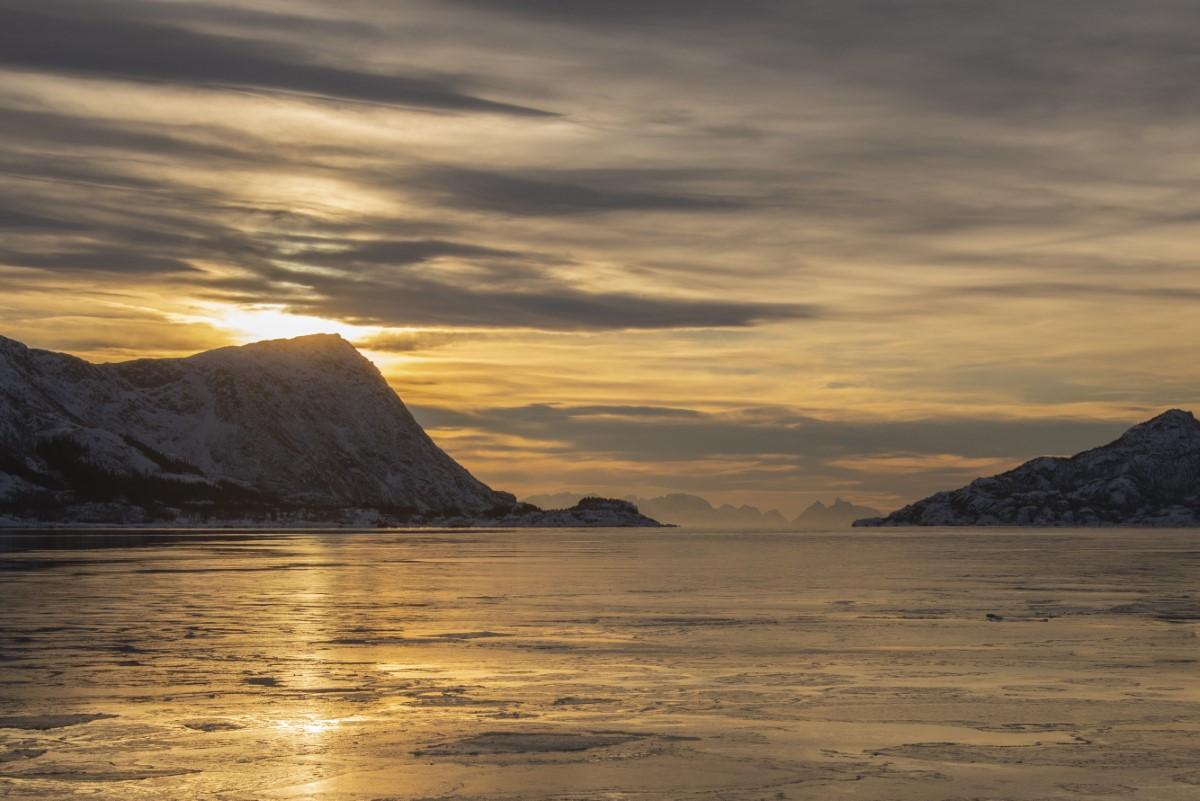Ijs op het fjord