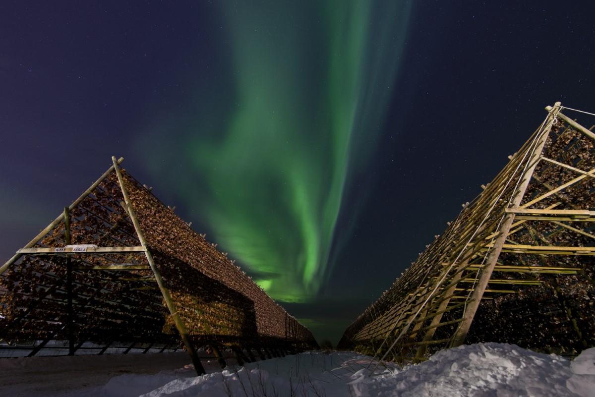 Noorderlicht 3